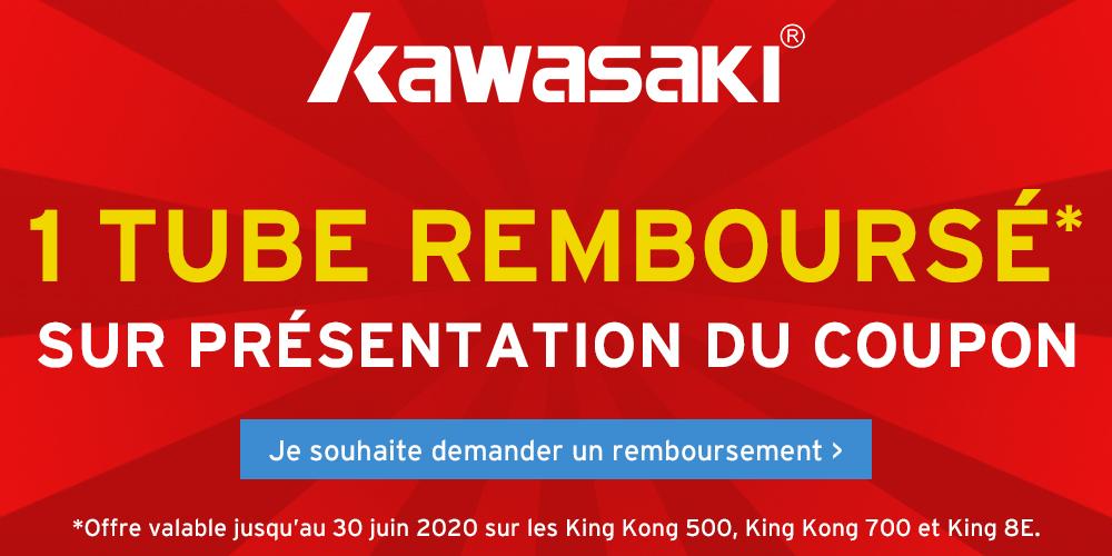 Kawasaki King Kong 500 volants Hybride volant